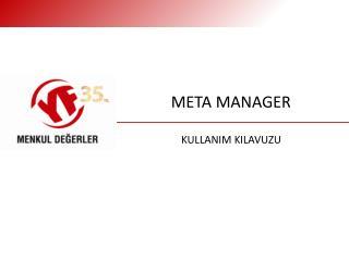 META MANAGER