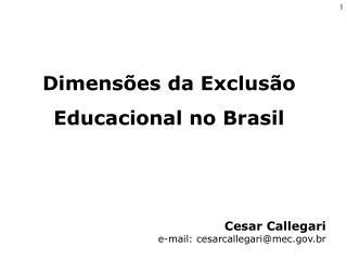 Cesar Callegari e-mail: cesarcallegari@mec.br
