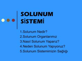SOLUNUM S ? STEM ?