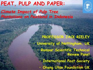 PEAT, PULP AND PAPER: Climate Impact of Pulp Tree Plantations on Peatland in Indonesia