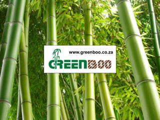 Alco Exotic Bamboo Flooring