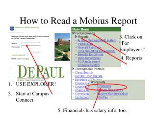 How to Read a Mobius Report