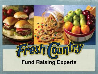 Fund Raising Experts