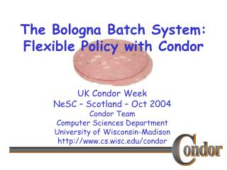 The Bologna Batch System: Flexible Policy with Condor