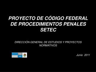 PROYECTO DE C DIGO FEDERAL DE PROCEDIMIENTOS PENALES SETEC   DIRECCI N GENERAL DE ESTUDIOS Y PROYECTOS NORMATIVOS   Juni