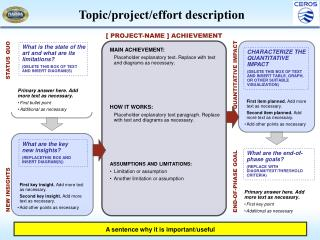 Topic/project/effort description