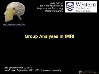 Group Analyses in fMRI