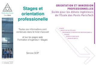 Stages et orientation professionelle