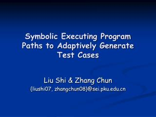 Symbolic Executing Program Paths to Adaptively Generate Test Cases