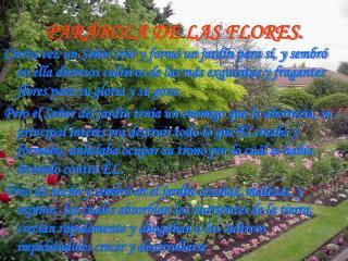 PAR BOLA DE LAS FLORES.