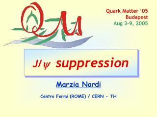 Quark Matter '05  Budapest  Aug 3-9, 2005