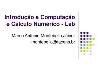 Introdu  o a Computa  o e C lculo Num rico - Lab