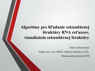 Algoritmy pre hľadanie sekundárnej štruktúry RNA reťazcov,  vizualizácia  sekundárnej štruktúry
