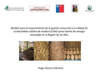 Hugo Cáceres Sánchez