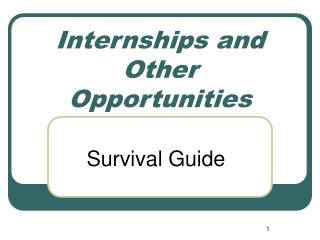 Internships and Other Opportunities