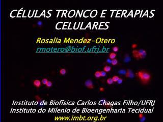 C LULAS TRONCO E TERAPIAS CELULARES