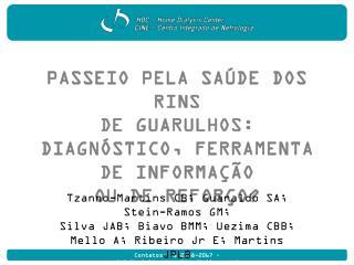 Passeio pela saúde dos rins  de Guarulhos: diagnóstico, ferramenta de informação  ou de reforço?