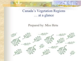 Canada's Vegetation Regions … at a glance