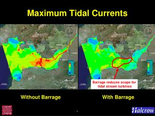 Maximum Tidal Currents