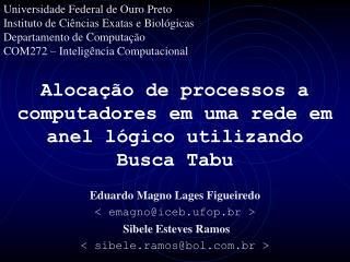 Alocação de processos a computadores em uma rede em anel lógico utilizando Busca Tabu