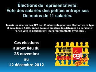 Élections  de représentativité: Vote des salariés des petites entreprises