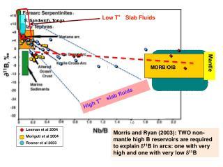 Leeman et al 2004 Moriguti et al 2004 Rosner et al 2003