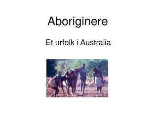 Aboriginere
