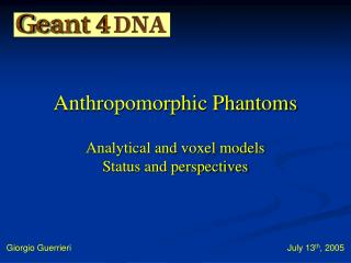 Anthropomorphic Phantoms   Analytical and voxel models  Status and perspectives
