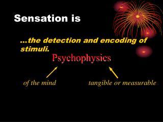 Sensation is