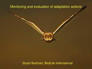 Monitoring and evaluation of adaptation actions