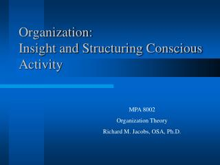 Organization: Insight and Structuring Conscious Activity
