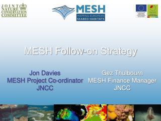 MESH Follow-on Strategy
