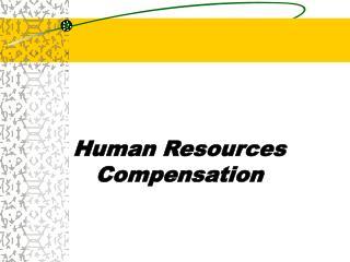 Human Resources Compensation