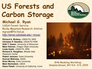 US Forests and Carbon Storage
