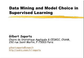Data Mining and Model Choice in Supervised Learning