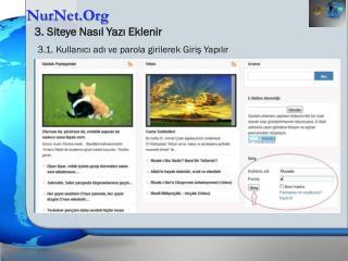 NurNet.Org