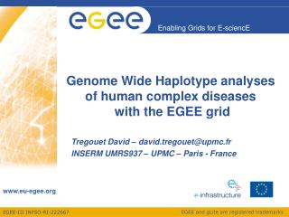Genome Wide Haplotype analyses of human complex diseases  with the EGEE grid