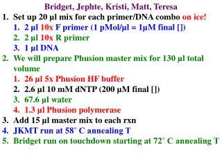 Bridget, Jephte, Kristi, Matt, Teresa Set up 20 µl mix for each primer/DNA combo  on ice!
