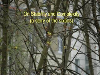On Stability and Complexity (a story of the sixties)