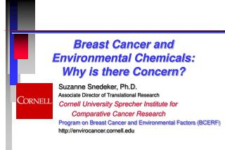 Breast Cancer and  Environmental Chemicals:  Why is there Concern