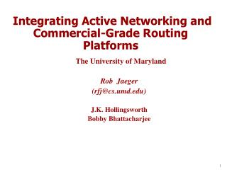 Integrating Active Networking and Commercial-Grade Routing Platforms