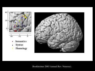 Bookheimer 2003 Annual Rev. Neurosci.