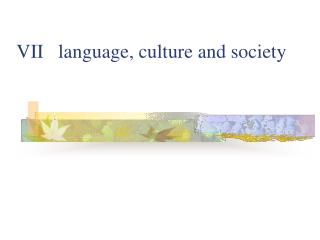 VII   language, culture and society