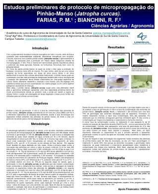 Estudos preliminares do protocolo de micropropagação do Pinhão-Manso ( Jatropha curcas).