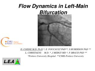 Flow Dynamics in Left-Main Bifurcation