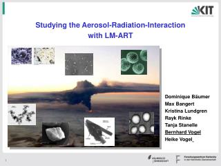 Studying the Aerosol-Radiation-Interaction  with LM-ART