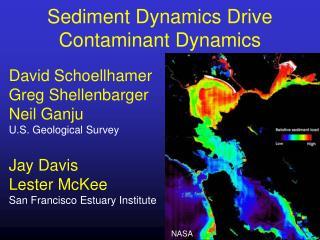 Sediment Dynamics Drive Contaminant Dynamics