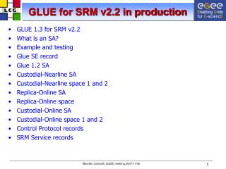 GLUE for SRM v2.2 in production