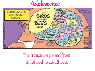 "transition from adolescence to adulthood essay Read this essay on transition to adulthood ""the biological changes associated with the transition of early adolescence are marked."