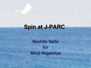Spin at J-PARC